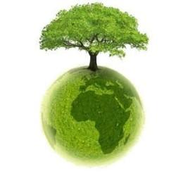 ekologia-swiadomosc-ekologiczna-edukacja